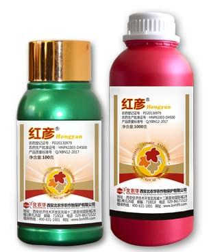 葡萄白粉病,葡萄白腐病特效药-红彦